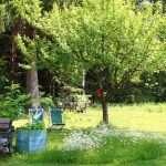 Residence Veider - Ogród